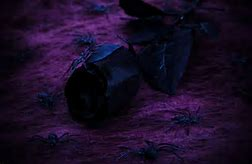 Image result for halloween roses black and purple banner
